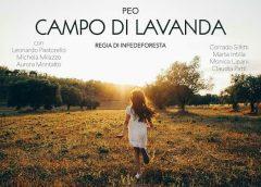 """PEO – """"Campo di Lavanda"""""""